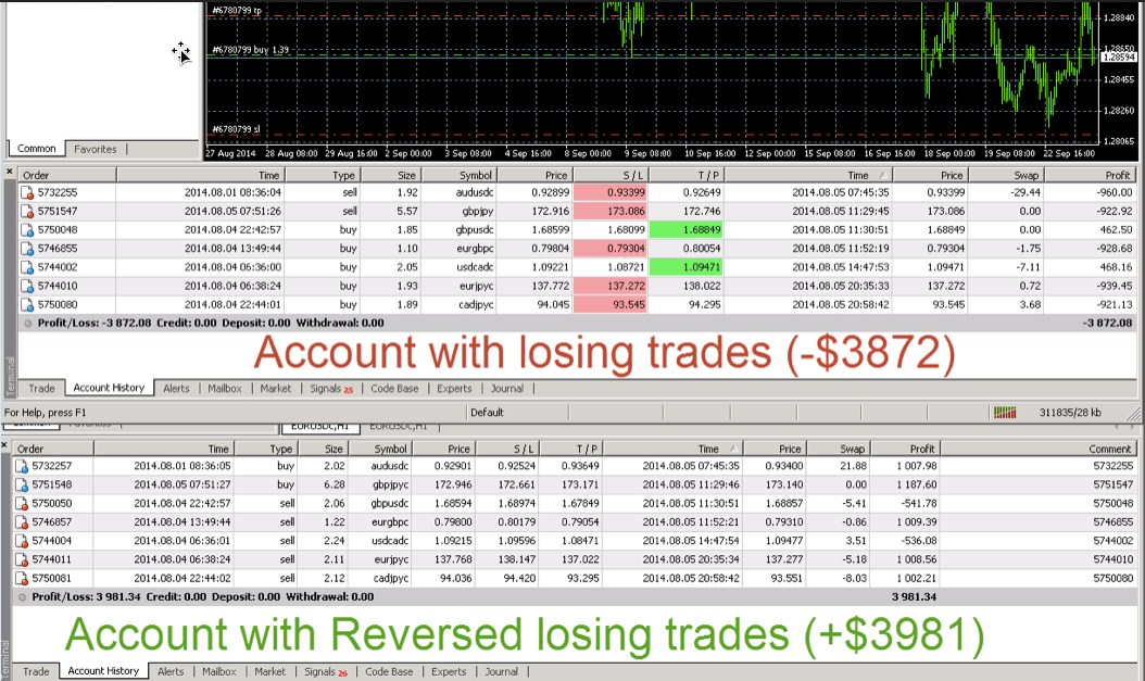 Copy trade forex broker